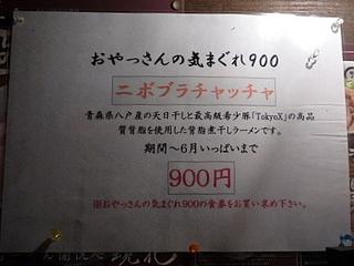 20090606__p1110952