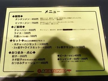 20110114akatonbo_2