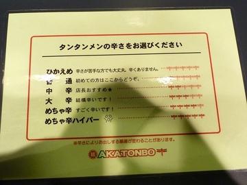 20110114akatonbo_3